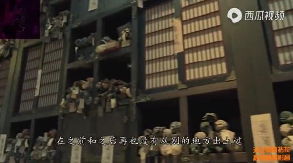 一个盗墓贼 撕破了儒家二千年来虚伪的面具